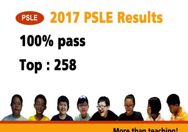 plain2_PSLE_2017
